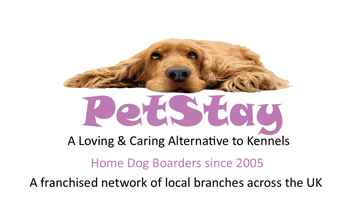 Case studies from PetStay's successful franchisees