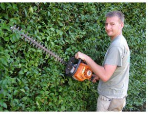 A Day in the Life of a Clean Cut Gardener