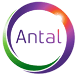 Antal rolling out a new identity and website
