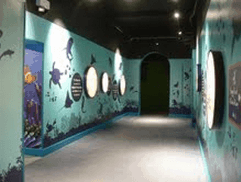 HISTORIC SEALIFE CENTRE GIVEN NEW LEASE OF LIFE