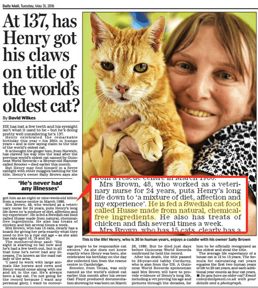 Husse Helps Henry's Claim to be the Oldest Living Cat in the World!