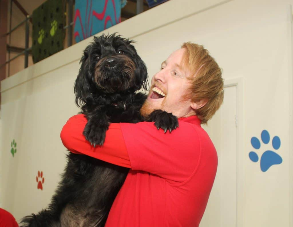 Q&A with Jon Kay, Franchisee at Bury St Edmunds Canine Creche