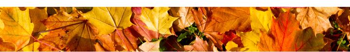 autumnborder.115757.png